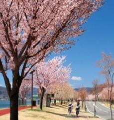 下諏訪町の画像