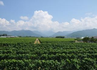 高山村の画像