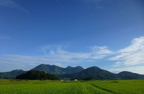 Q:木島平村に住むきっかけは?の画像