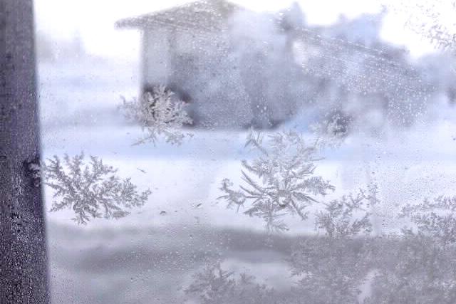 ◆「狭」い山から「飯」の山に移住!の画像