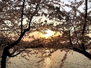 ●須坂へ引っ越しての画像