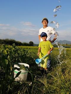 ●地域で育てる子育て環境の画像